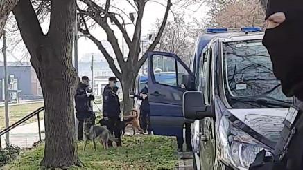 """U PRETRES UKLJUČENI I PSI: Policija detaljno pretražuje splav """"Fristajler"""""""