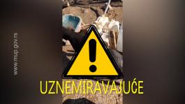 (UZNEMIRUJUĆE) Užasan snimak zlostavljanih pasa u azilu za obuku kod Kragujevca